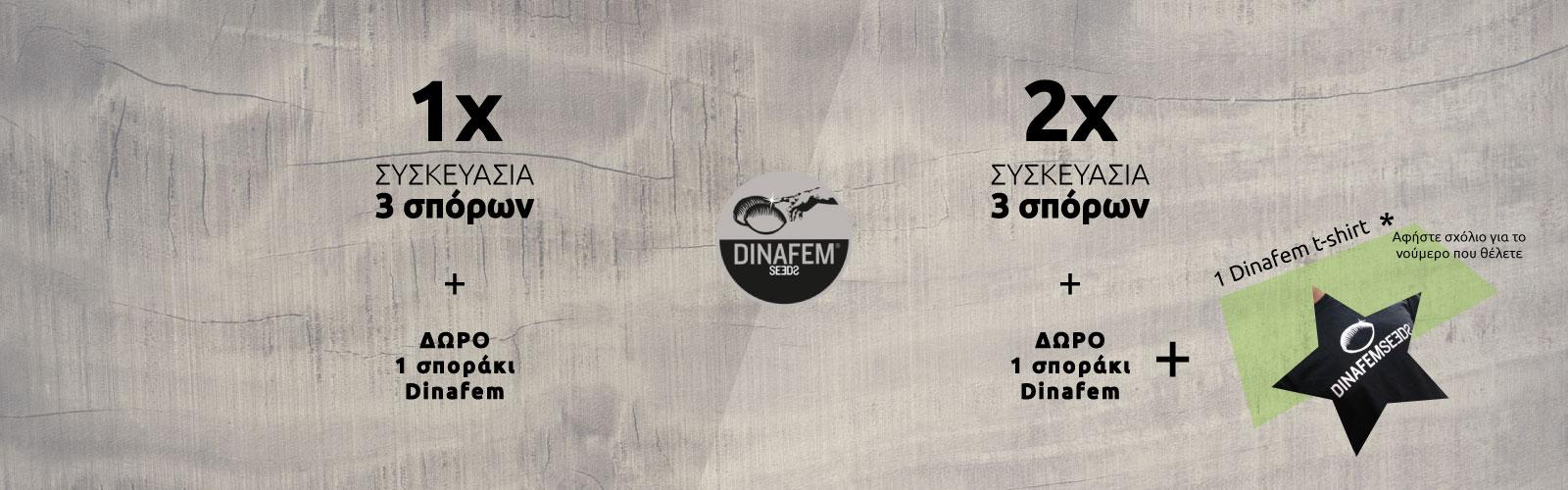 Dinafem-1x-2x-offer-4