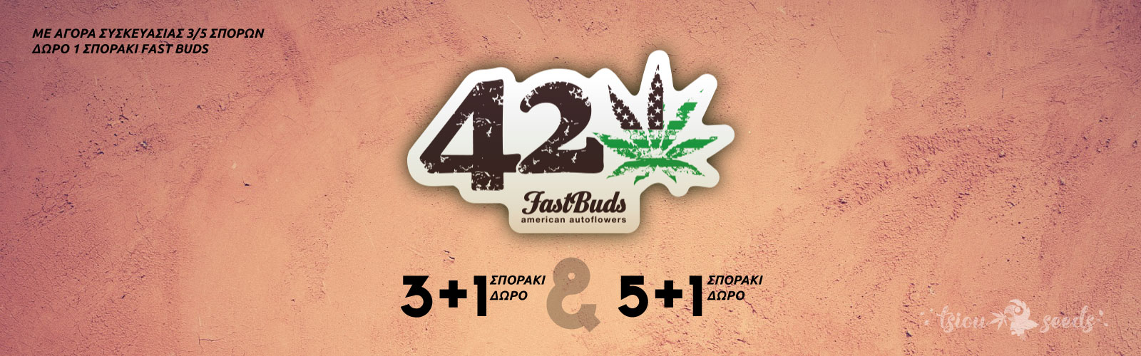 Fast-Buds-Offer