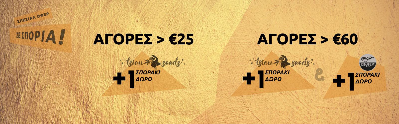Προσφορά σε σπόρους κάνναβης | Tsiou Seeds + Dinafem