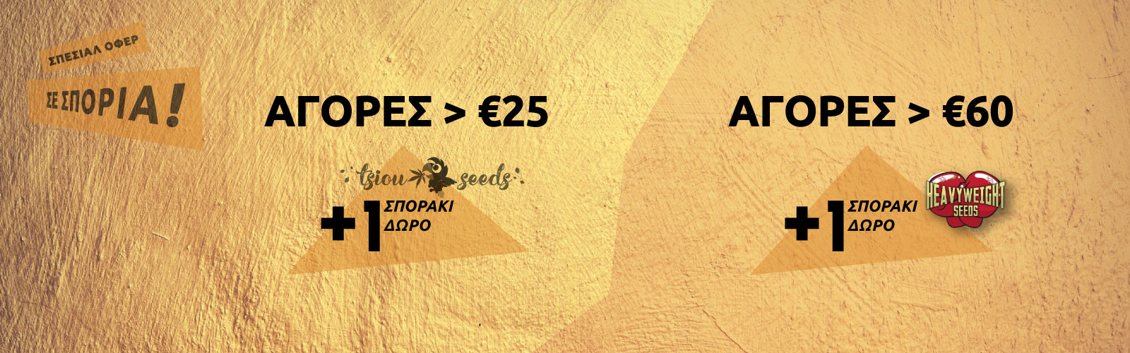 TsiouSeeds-Offer-Seeds-Oct2019