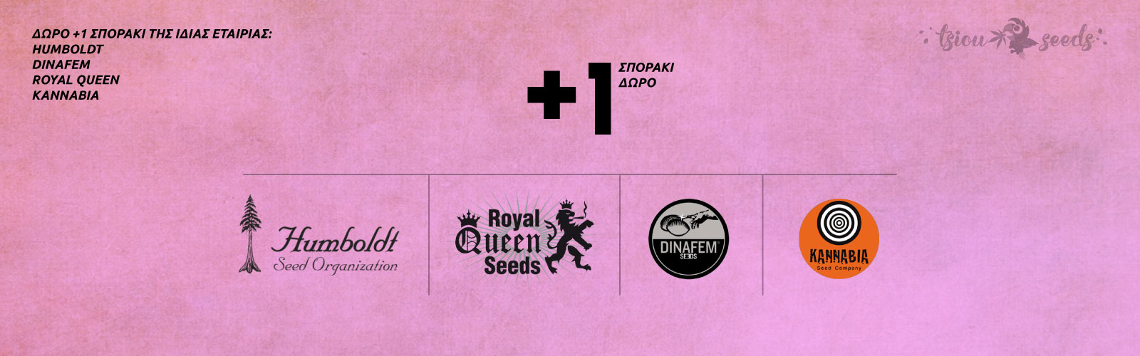 TsiouSeeds-Offer-Seeds-plus1-Oct2019