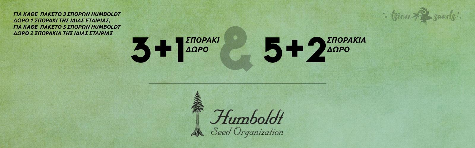 Humboldt-Offer