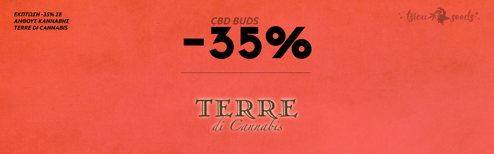 Terre-Di-Cannabis-Offer-35