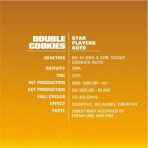 DOUBLE-COOKIES-AUTO-1