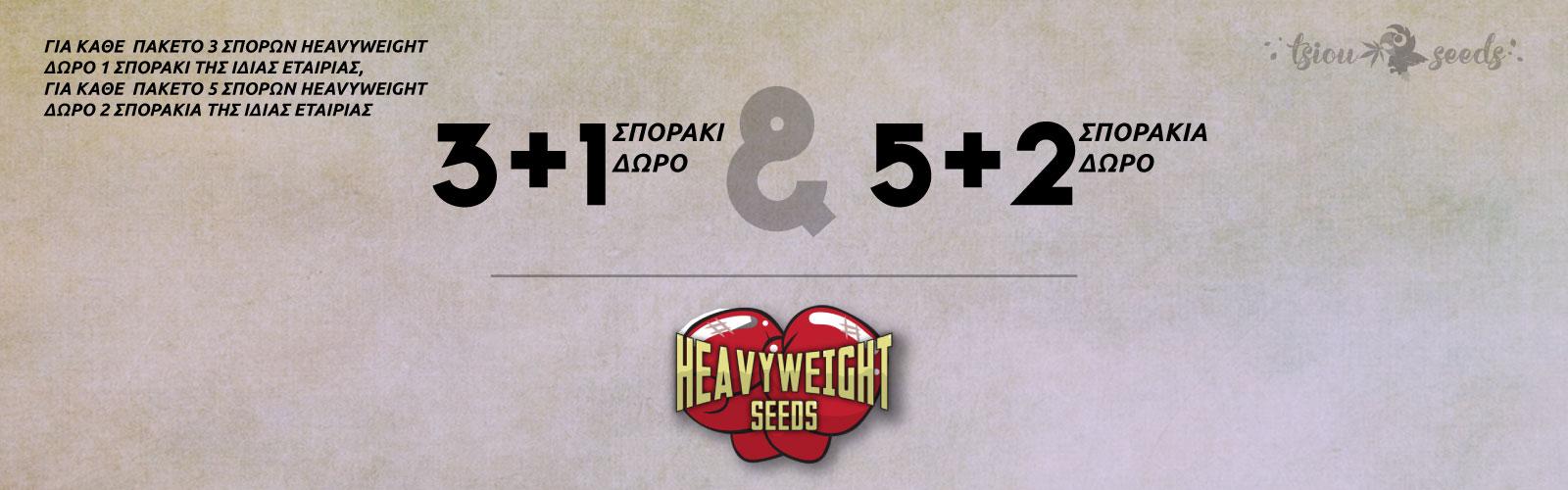 Heavyweight-Offer-2