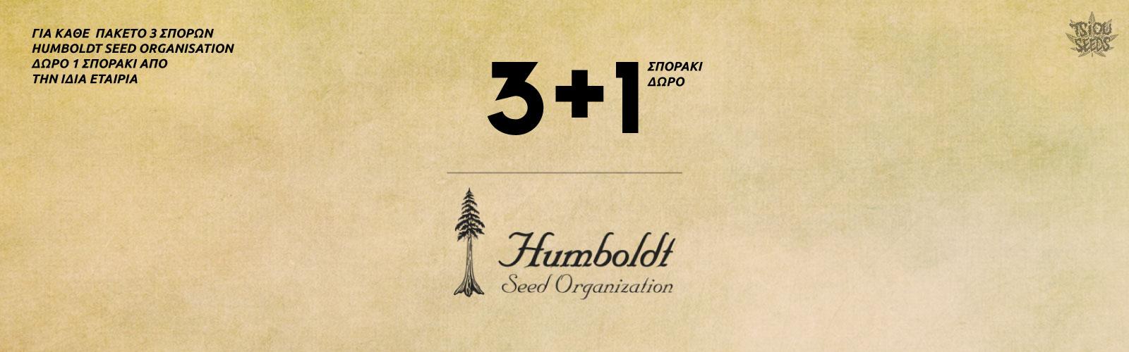 Humboldt-Offer-2