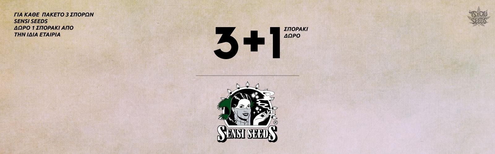 Sensi-Seeds-Offer-2
